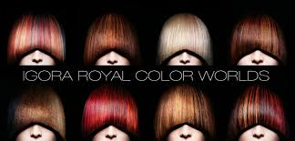 Колористика Igora Royal от Schwarzkopf